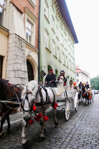 Horse-drawn carriages on the streets of Krakow