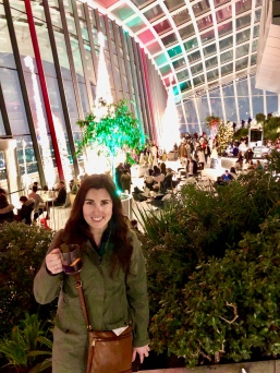 The festive Sky Garden at Christmas time