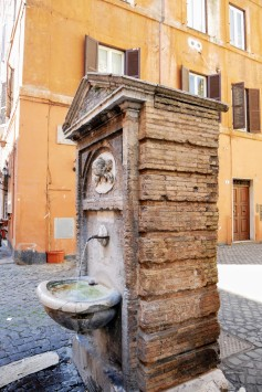 Last impressions of Rome- color, architecture, and noses (aka bubblers)