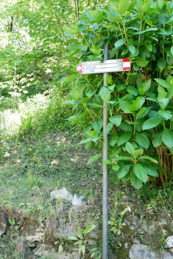 The tell tale sign posts marking trails across Europe
