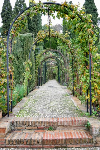 The gardens of the Generalife
