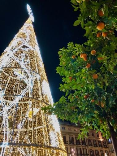 Christmas and orange trees in Málaga