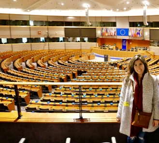 Inside the Hemicycle at the European Parliament