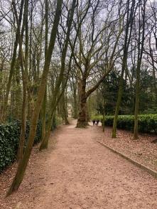 Parc Brugmann views